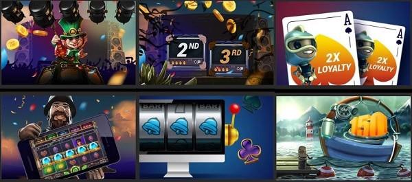 GOWILD Casino bonuses, promotions, rewards
