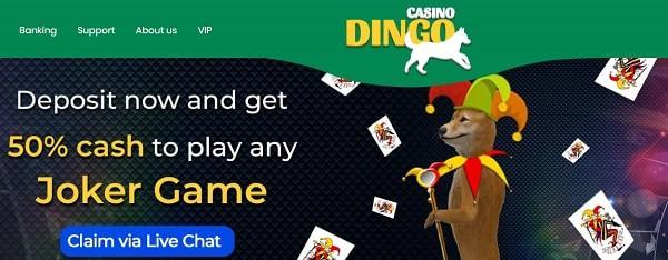 Dingo Joker Game