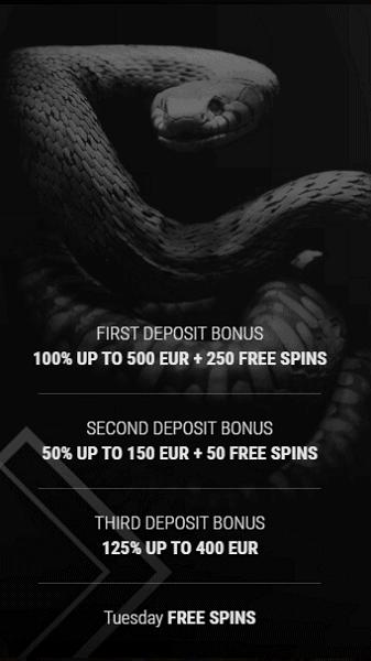 10 free spins bonus no deposit required