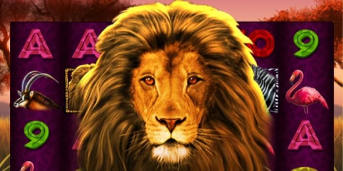 Wild Lion Slot free bonus